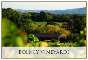 Bolney Vineyards
