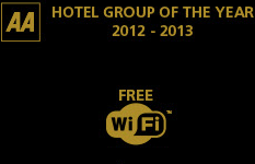 Hotel group of the year 2012 - 2013